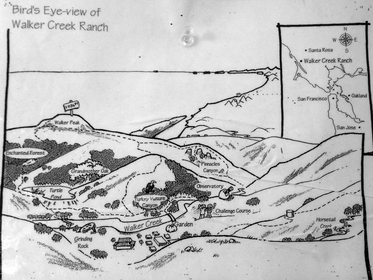 'Cute hand drawn map of Walker Creek Ranch'